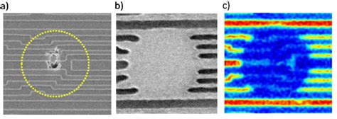 Images of EUV-specific defect on mask demonstrating
