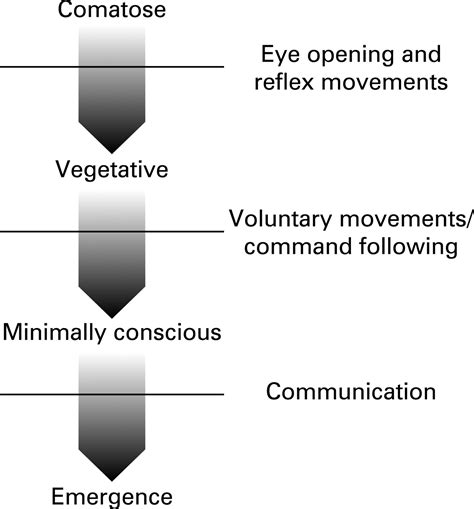 A twitch of consciousness: defining the boundaries of